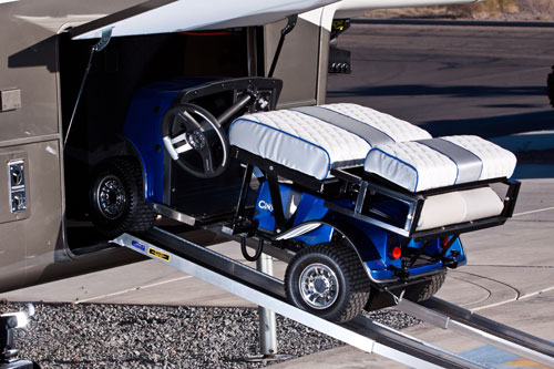 Cricket Golf Cart Sales Service Rentals And Consignment Lsv
