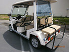 CT&T cZone Electric Golf Cart : LSV Carts