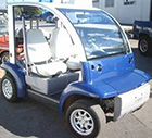 Ford Think Neighbor : Black 2 Seater | Golf Cart : LSV Carts