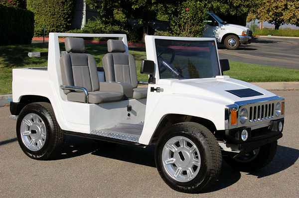 T Sport Golf Carts Sales Service Rentals And